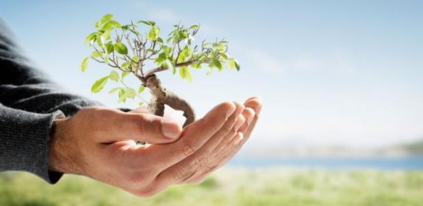 Será que realmente estamos preocupados com o meio ambiente?